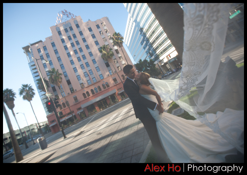 through the veil with hotel de anza in the background san jose