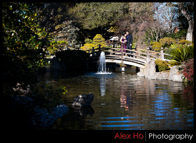 central park san mateo japanese tea garden bridge