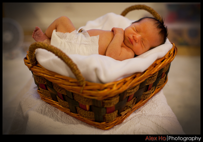 newborn baby basket photoshoot photography
