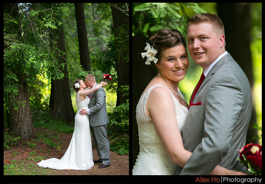woods trees wedding portraits bride groom