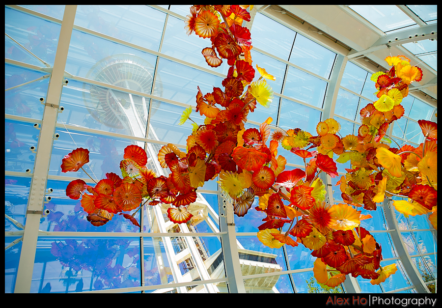 space needle seattle chihuly glass museum