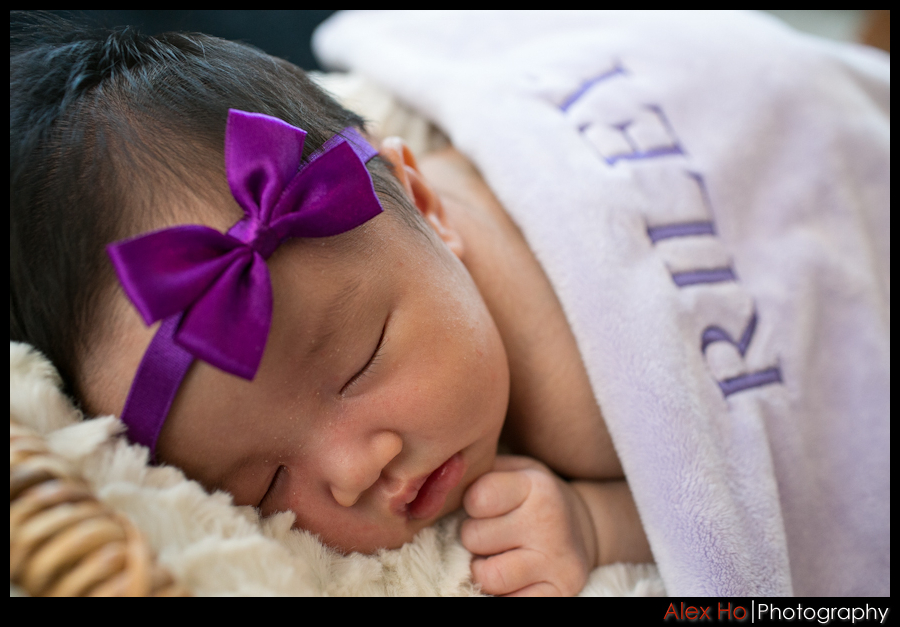 baby portraits photo session sleeping infant newborn bay area san francisco