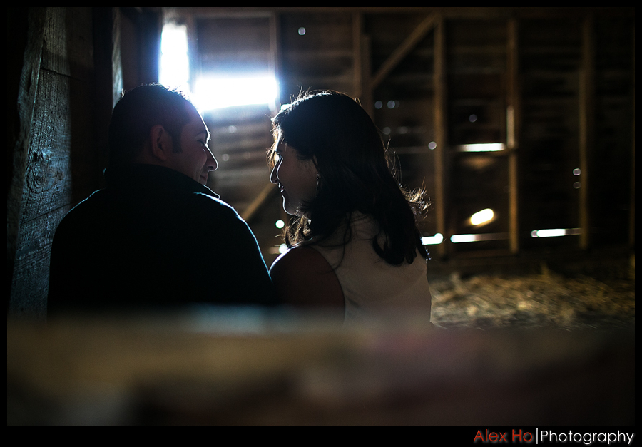 barn Henry Coe State Park Engagement Session