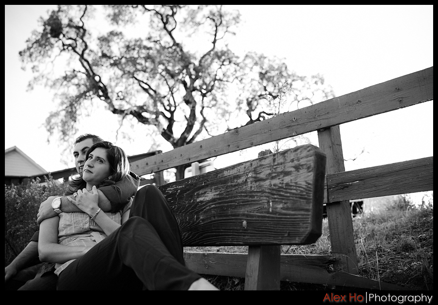 bench portrait