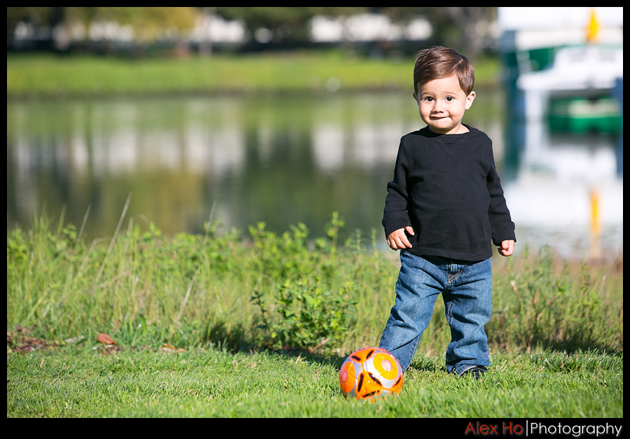 soccer ball portrait