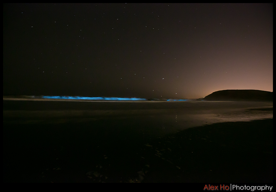 redtide bioluminescence ocean waves pacifica linda mar beach
