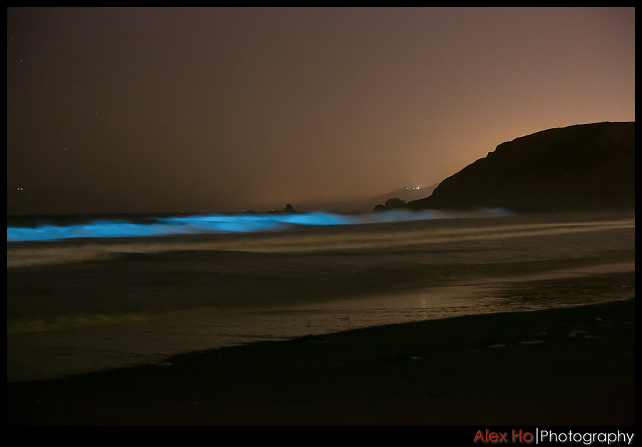 redtide bioluminescence waves pacifica lindamar