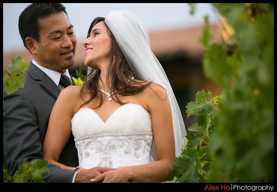 napa winery sonoma lodge wedding ceremony reception