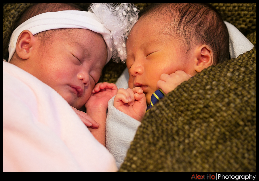 baby boy girl twins portraits