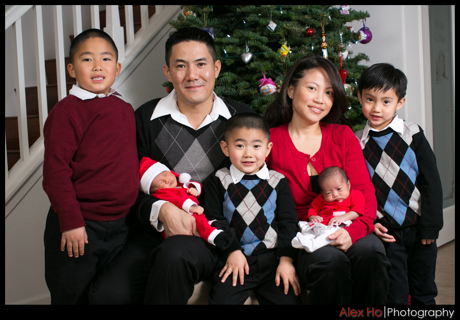 family holiday portraits
