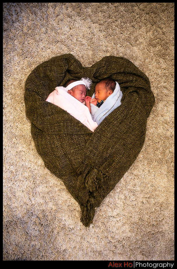 newborn baby boy girl twins portraits photosession heart