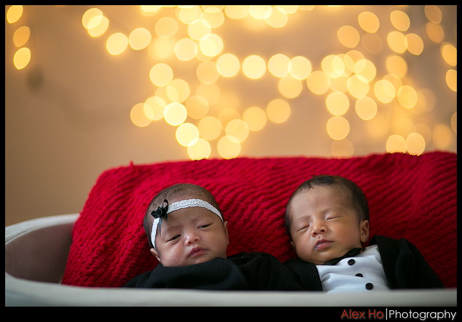 newborn fraternal baby boy girl twins portraits