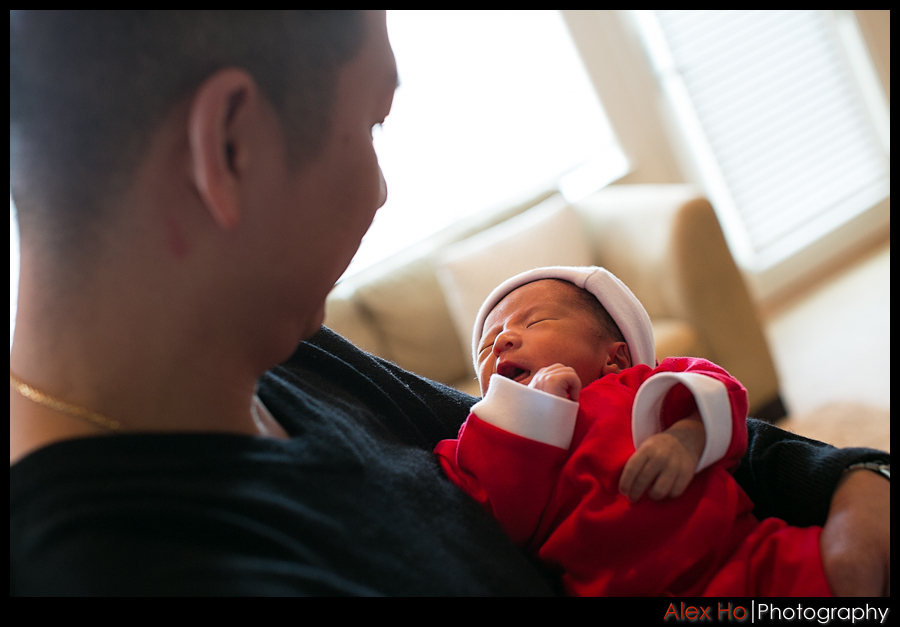 newborn baby santa portraits