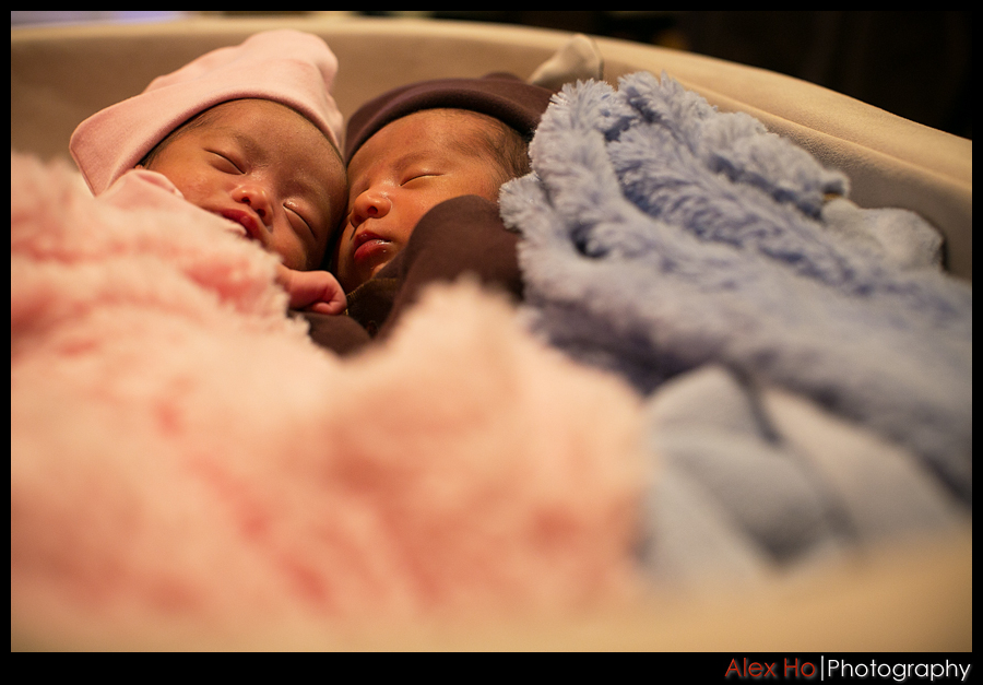 newborn baby twins sleeping