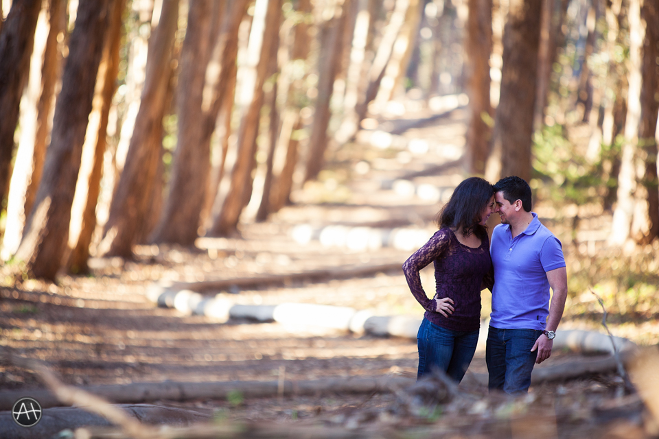 engagement session presidio woodline loverslane