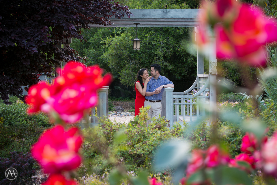 backyard esession rose garden