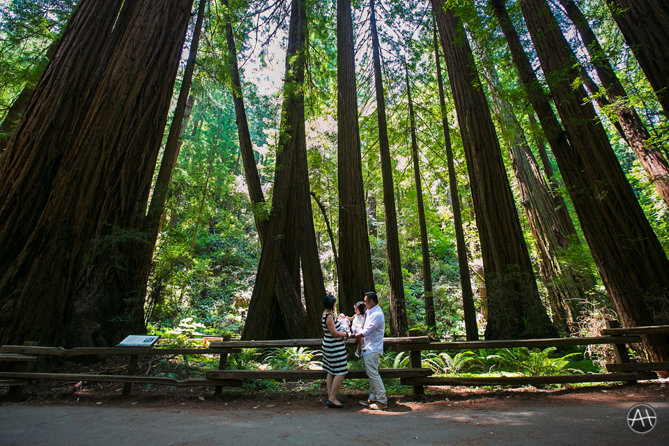 muir woods family portrait